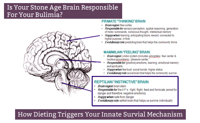 The Self Starving Brain >> Why Your Stone Age Brain Is Responsible For Your Bulimia